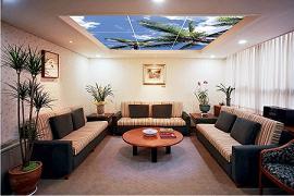 Монтаж подшивных потолков фото