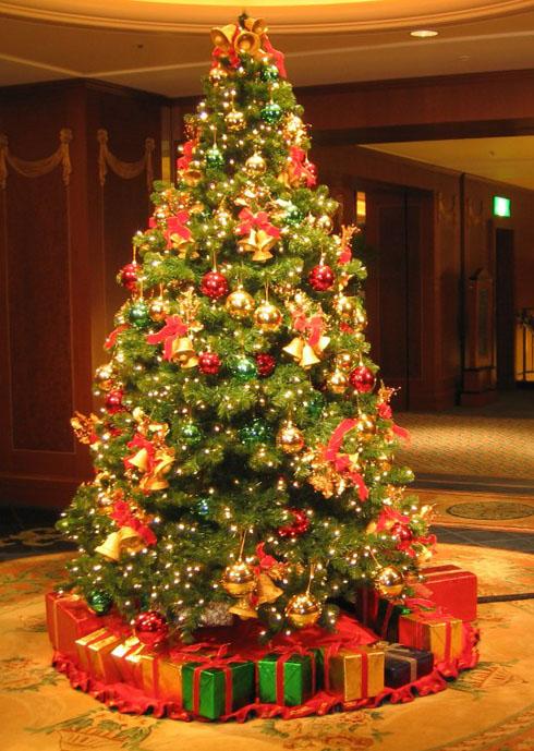 Установка новогодней елки в интерьере фото