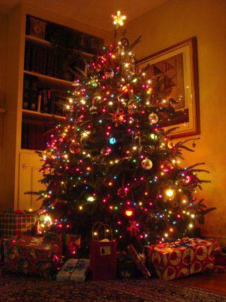 Устанавливаем новогоднюю елку в квартире фото