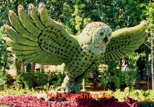 Садово-парковая скульптура топиари сова фото
