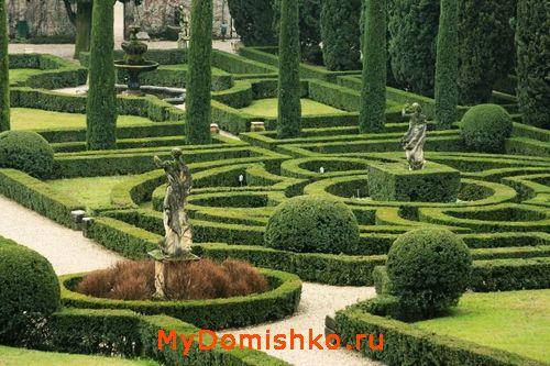 Фото фигурно стриженого сада